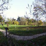 L'arboretum-sur-le-Mont-(1)